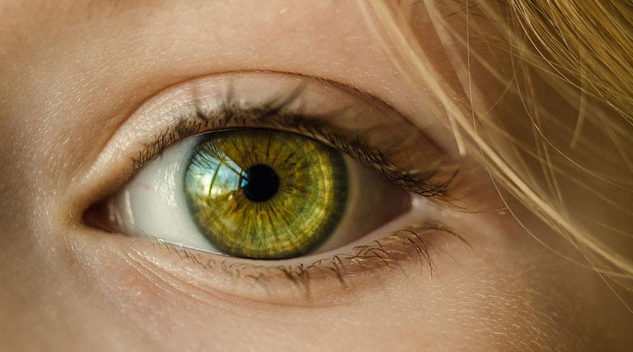Cannabis Glaukom