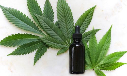 Cannabisprodukte